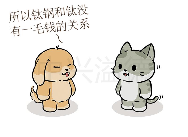 阿猫&阿狗的日常:钛钢=316L不锈钢7