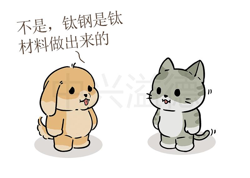 阿猫&阿狗的日常:钛钢=316L不锈钢3